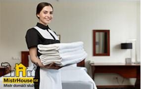 Služby hospodyně